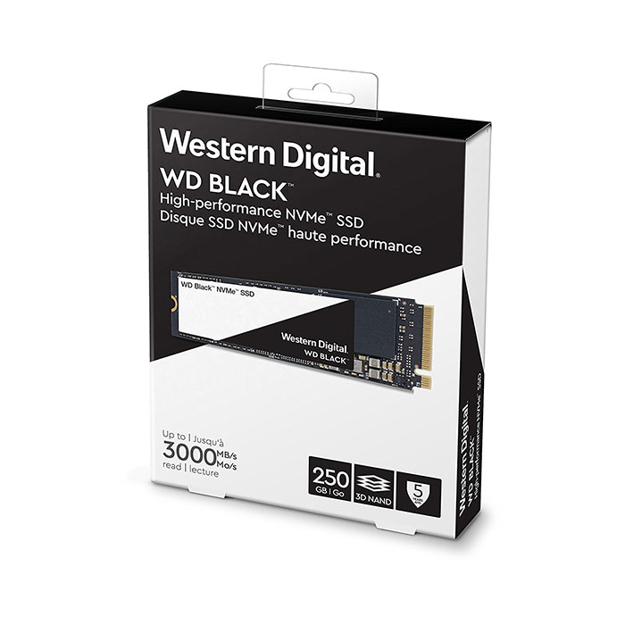 WESTERN DIGITAL Black 3D NAND 250GB M.2 NVMe Internal SSD