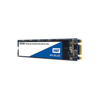 WESTERN DIGITAL Blue 3D NAND 250GB M.2 Internal SSD