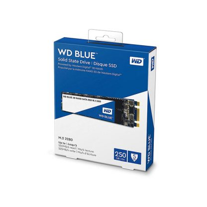 WESTERN DIGITAL Blue 3D NAND 250GB M.2 Internal SSD